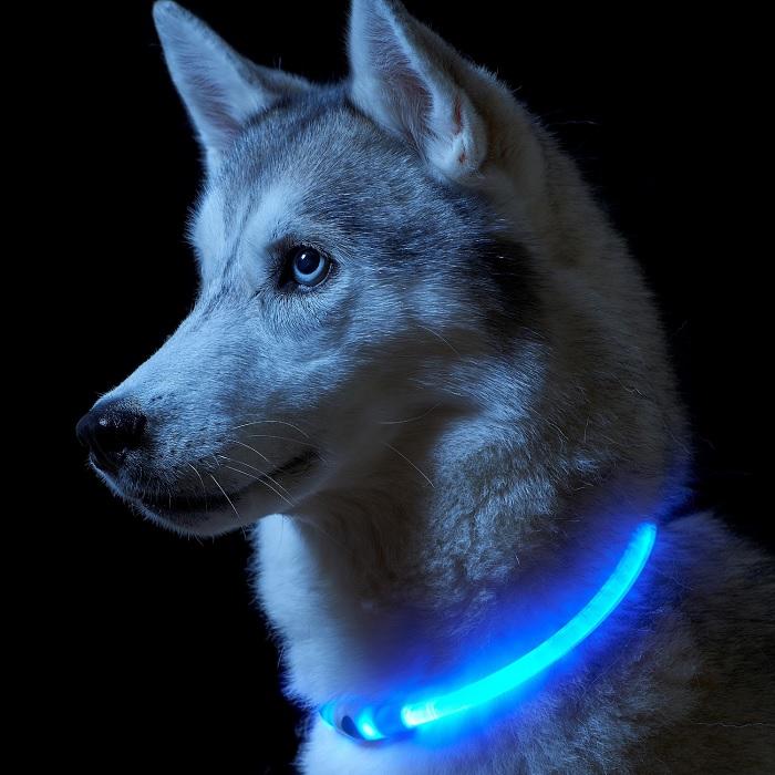 قلاده سگ مدل نوری